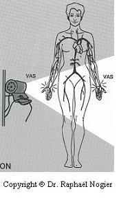 auricumedecine-nogier